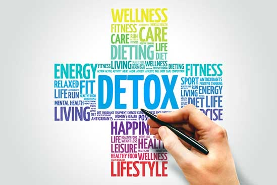 Detox Illustration (cross) on how to purge your body of environmental contaminants like pesticides, toxins and phthalates.