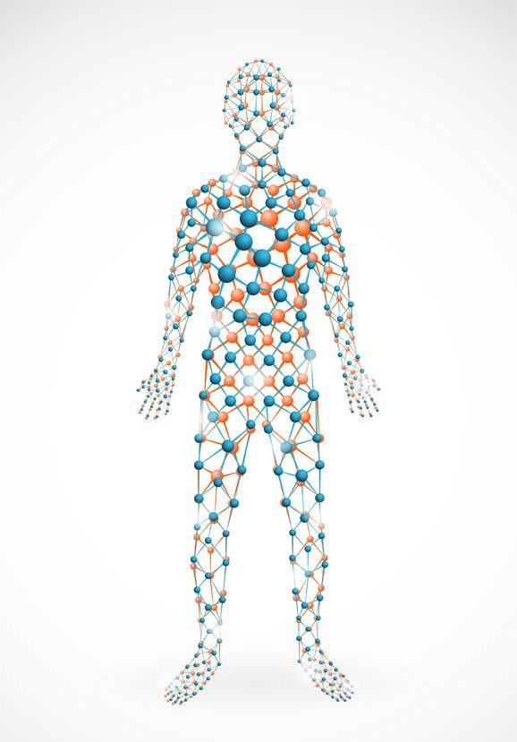Illustrated human body connected with colored molecules