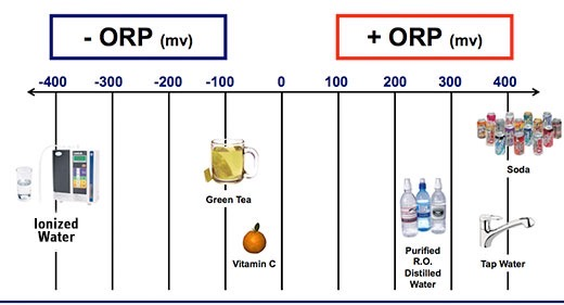 Picture of water ionizer, glass with green tea and vitamin c fruit showing the -orp on a graph. On the right site soda cans, plastic bottles and faucet presenting +orp.