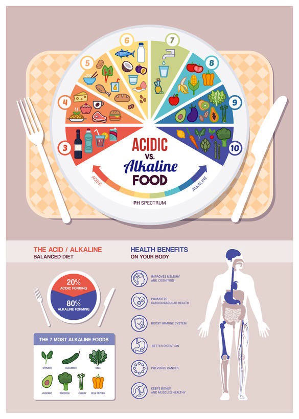 Illustration of the acid-alkaline balanced diet. Drawn plate with food elements and human body.